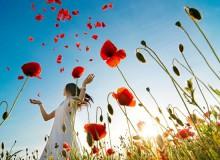 Цветет и пахнет